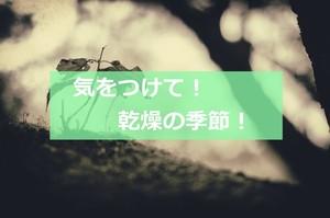 乾燥の季節!.jpg